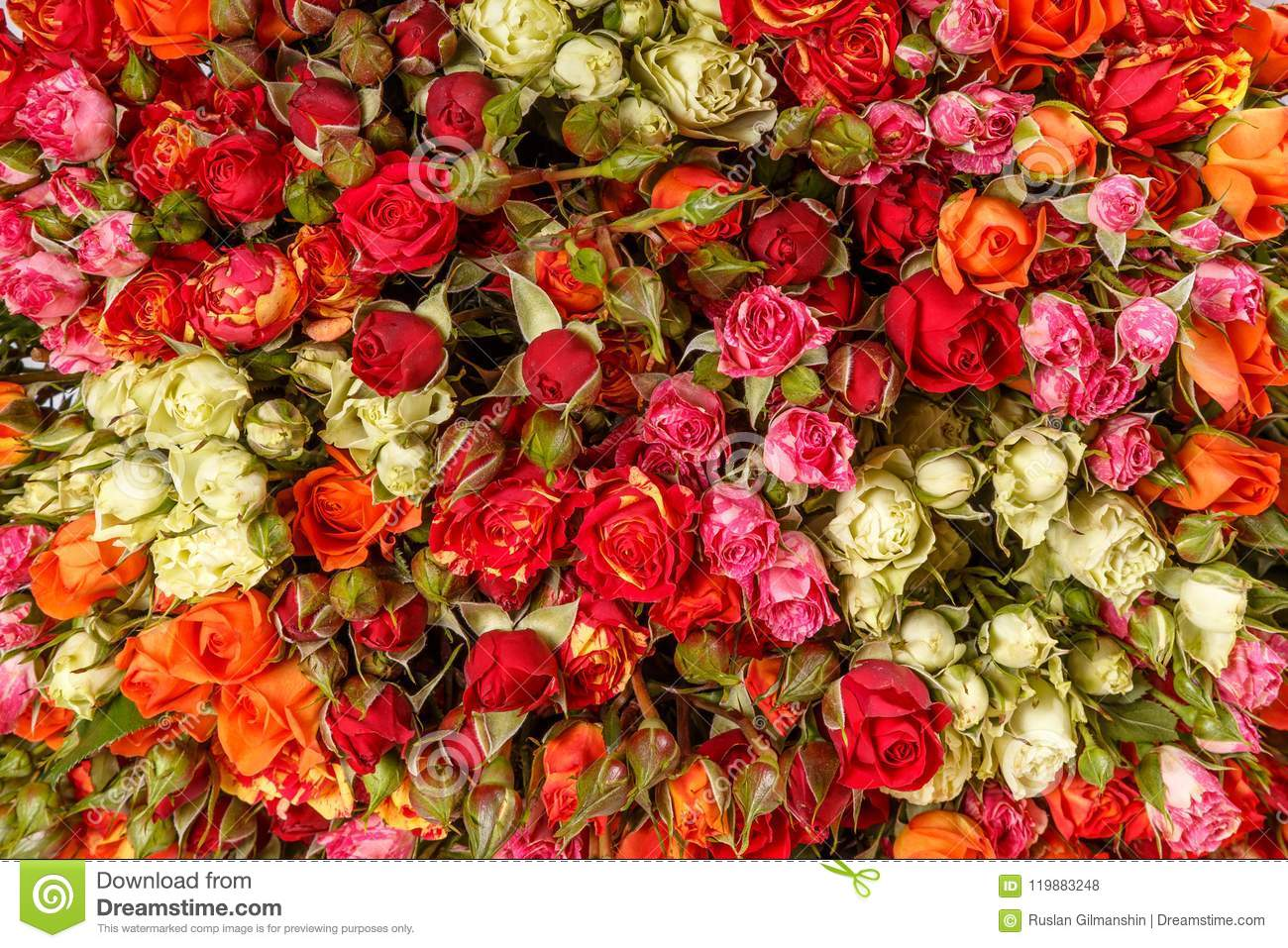 Beautiful Flowers Background For Wedding Scene Stock Photo Image