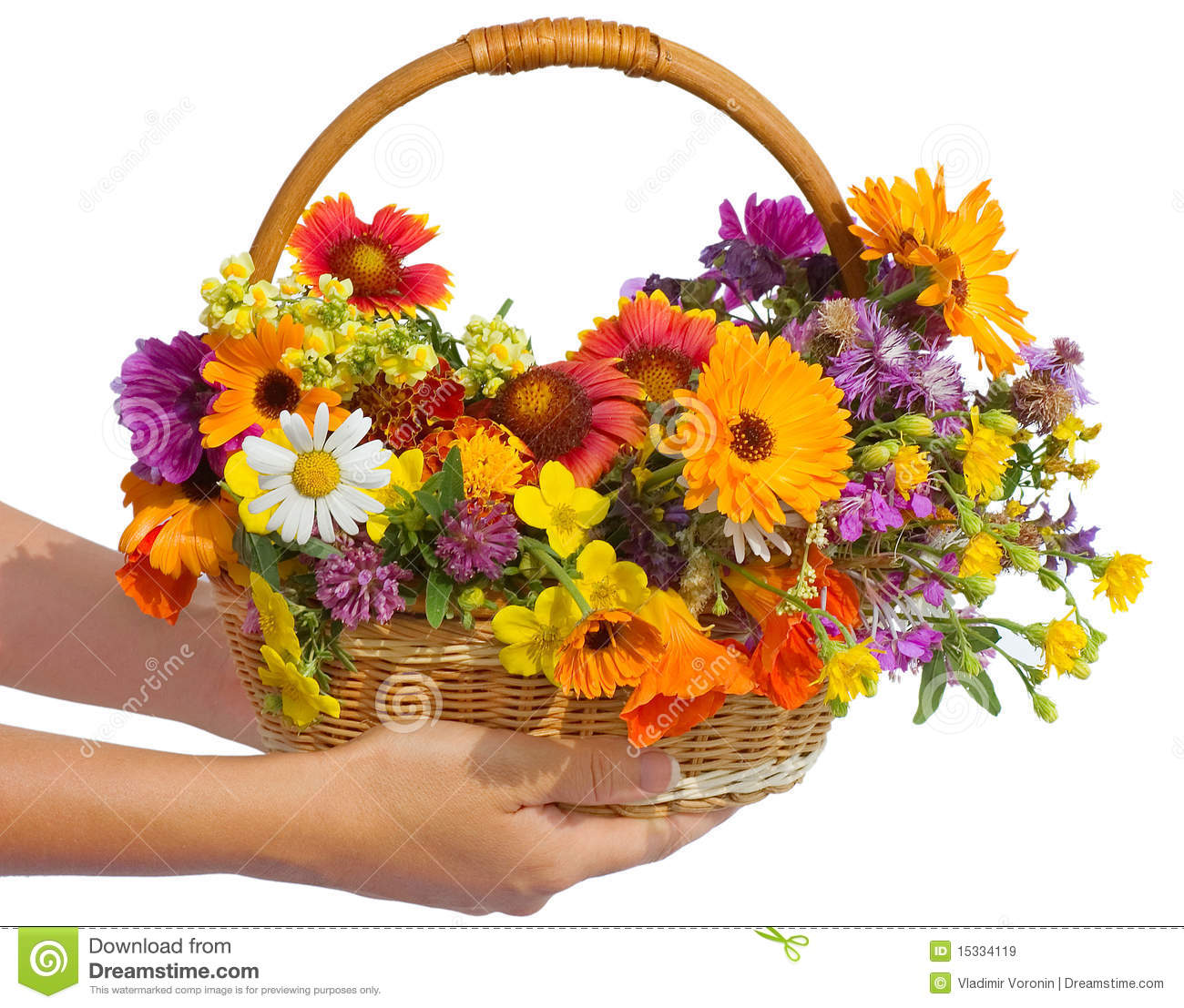 Beautiful flowers in a basket stock image image of isolated hand download beautiful flowers in a basket stock image image of isolated hand 15334119 izmirmasajfo