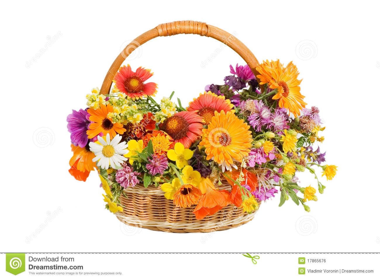 Beautiful flowers in a basket isolated on white