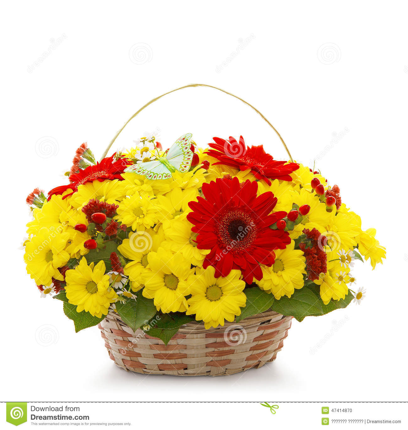 Beautiful flowers in a basket isolated on white stock photo image beautiful flowers in a basket isolated on white stock photo image of baskets field 47414870 izmirmasajfo