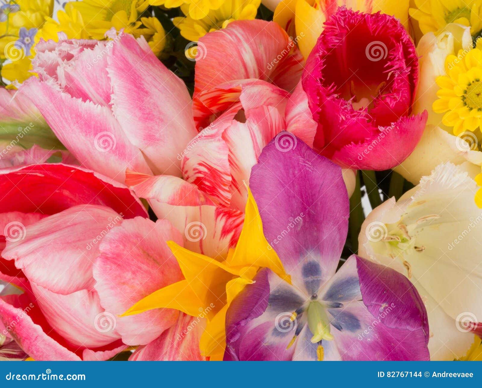 Beautiful flowers in a bouquet stock photo image of flowers white beautiful flowers in a bouquet izmirmasajfo