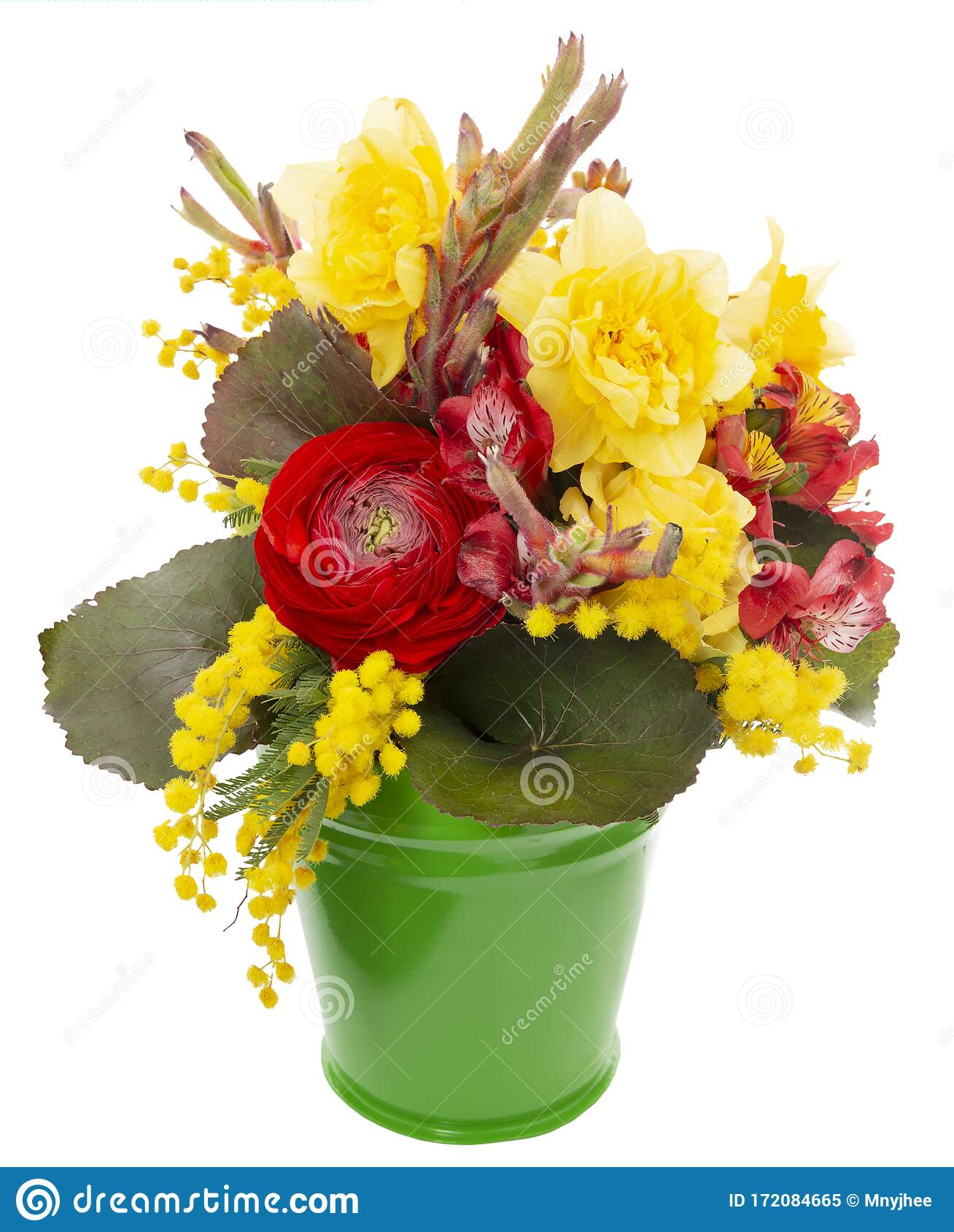 Beautiful Flowers In A Bucket Stock Image - Image of ...