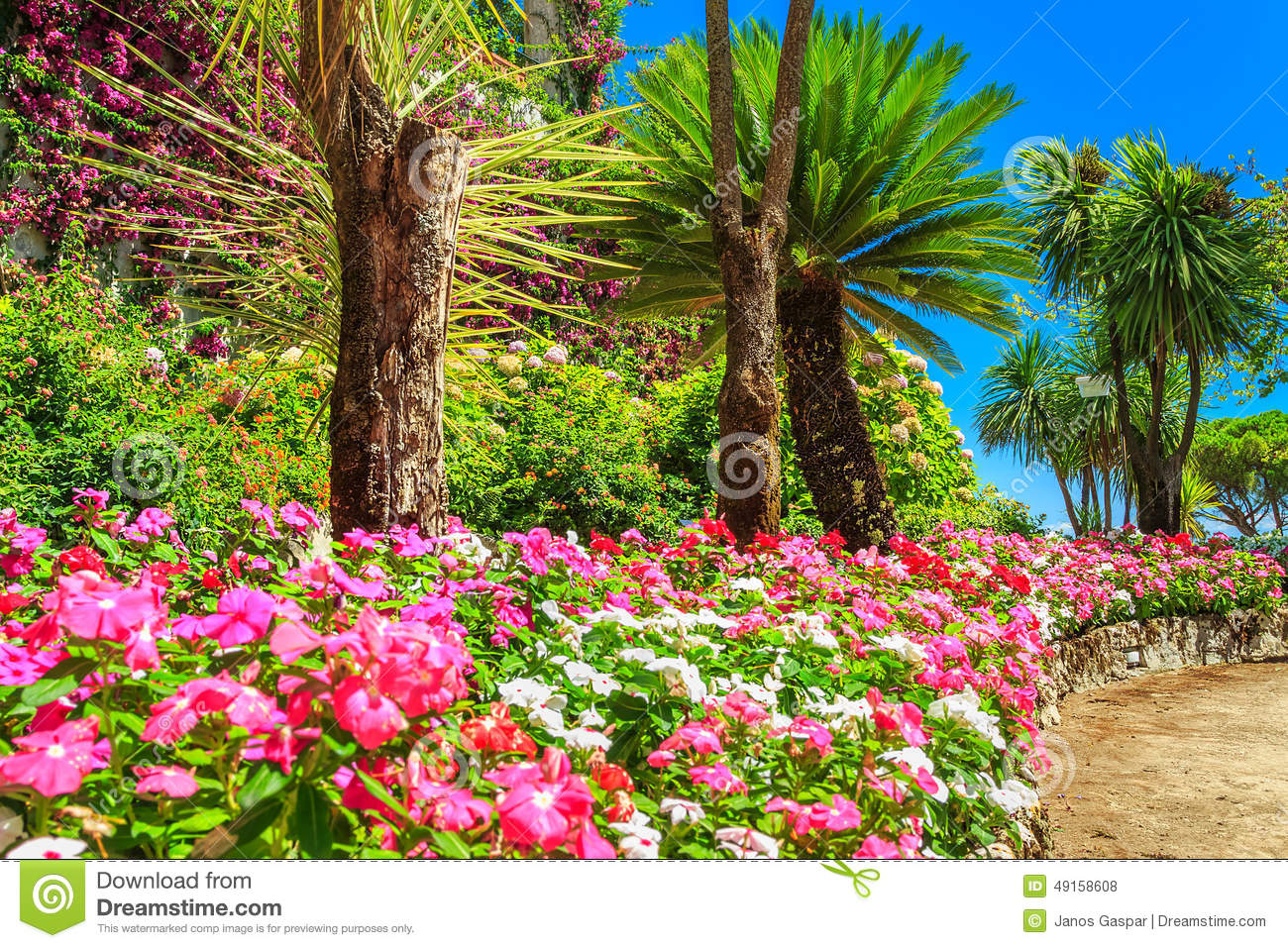 Beautiful flowers plants and trees rufolo garden ravello for Arboles con flores para jardin