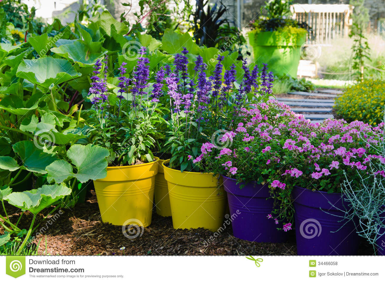 Beautiful flowers pots stand in the garden stock photo image 34466058 - Potted gardentricks beautiful flowers ...