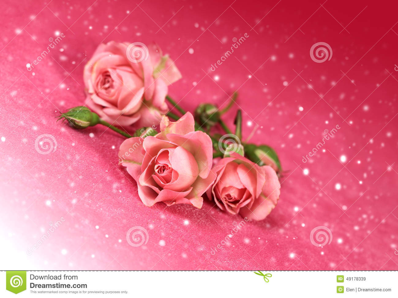 Beautiful flowers roses with snow stock image image of picture beautiful flowers roses with snow izmirmasajfo Images
