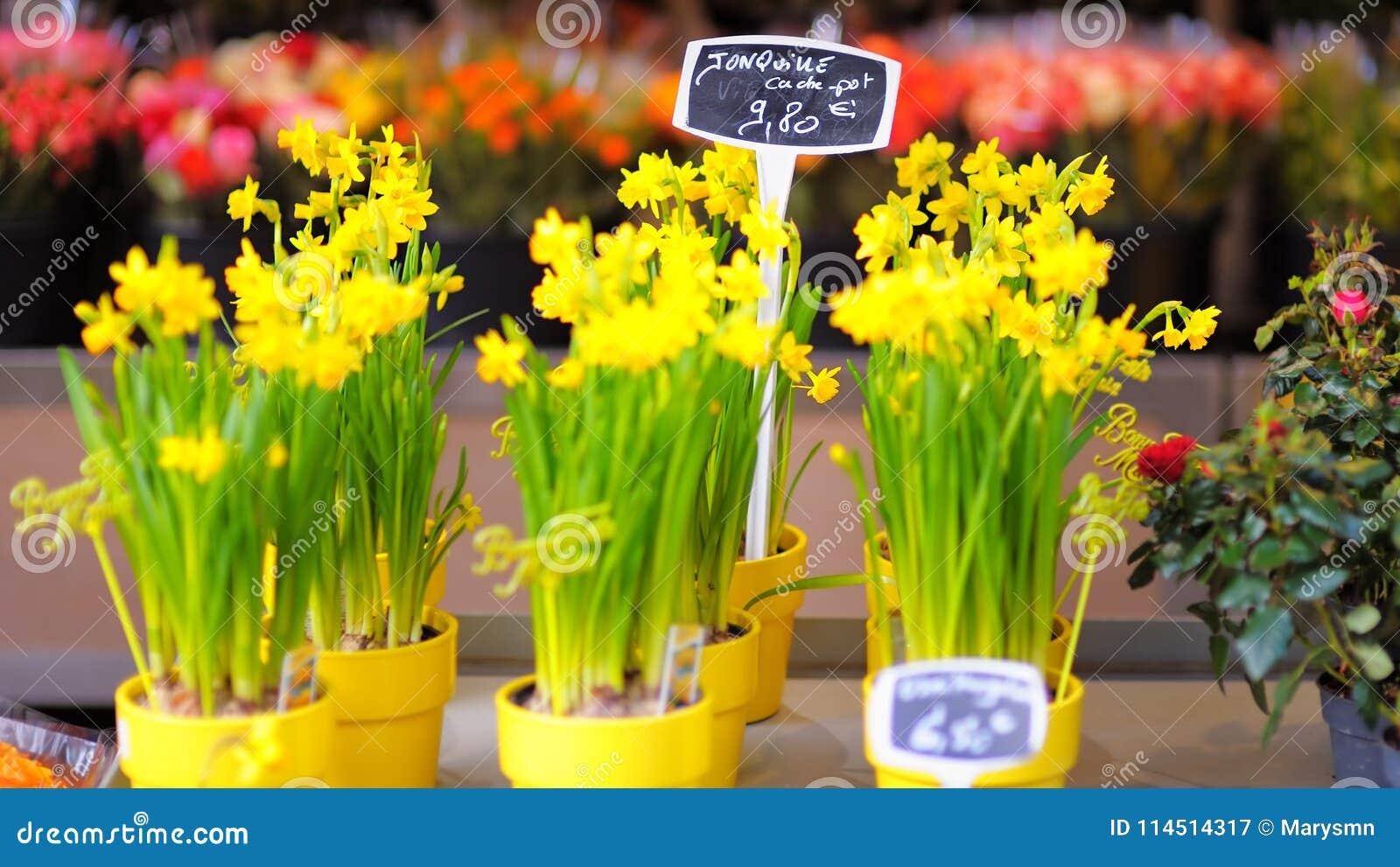 Beautiful flowers sold on outdoor flower shop stock image image of beautiful flowers sold on outdoor flower shop izmirmasajfo Gallery
