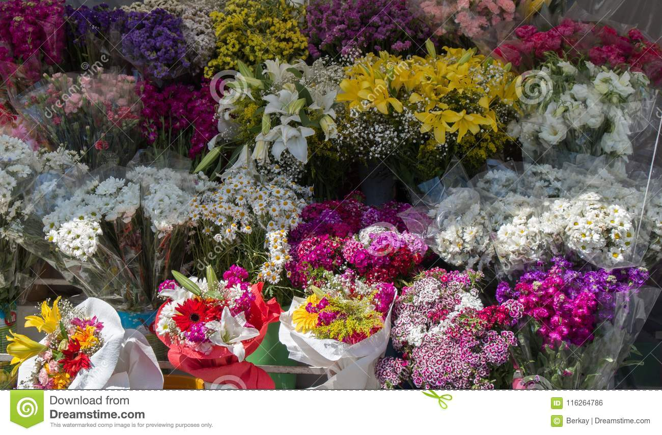 Beautiful Flowers Of Various Types Stock Photo Image Of Flowers