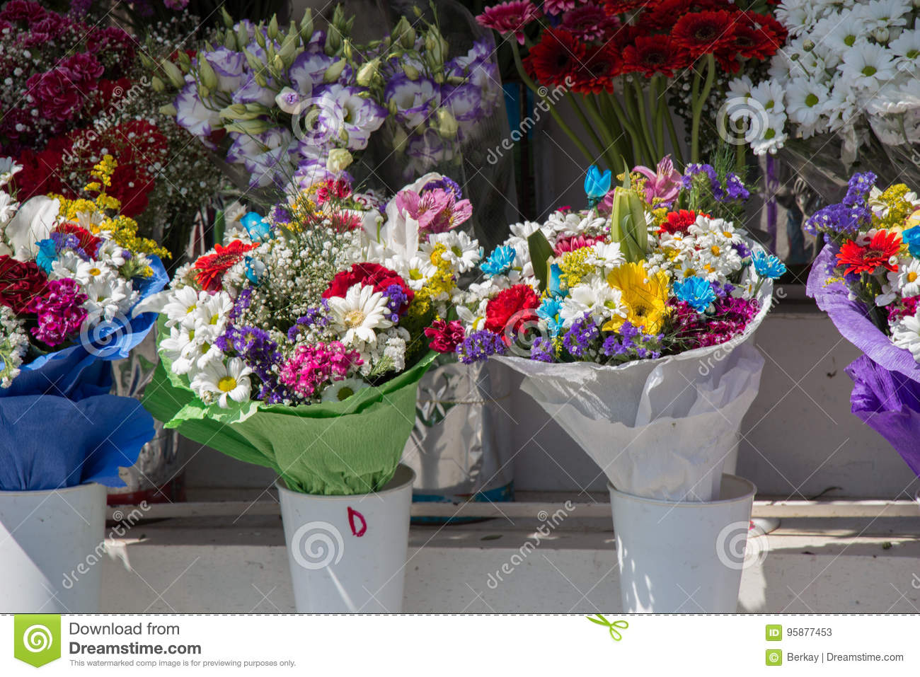 Beautiful Flowers Of Various Types Stock Image Image Of Growth