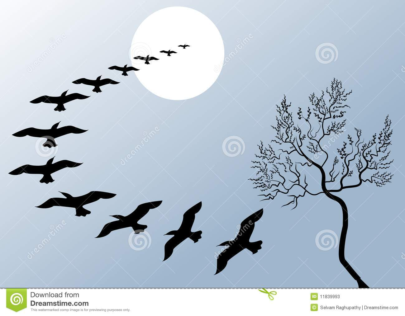 Flying Birds Free Stock Photos Download 3 416 Free Stock: Beautiful Flying Birds Stock Vector. Image Of Background