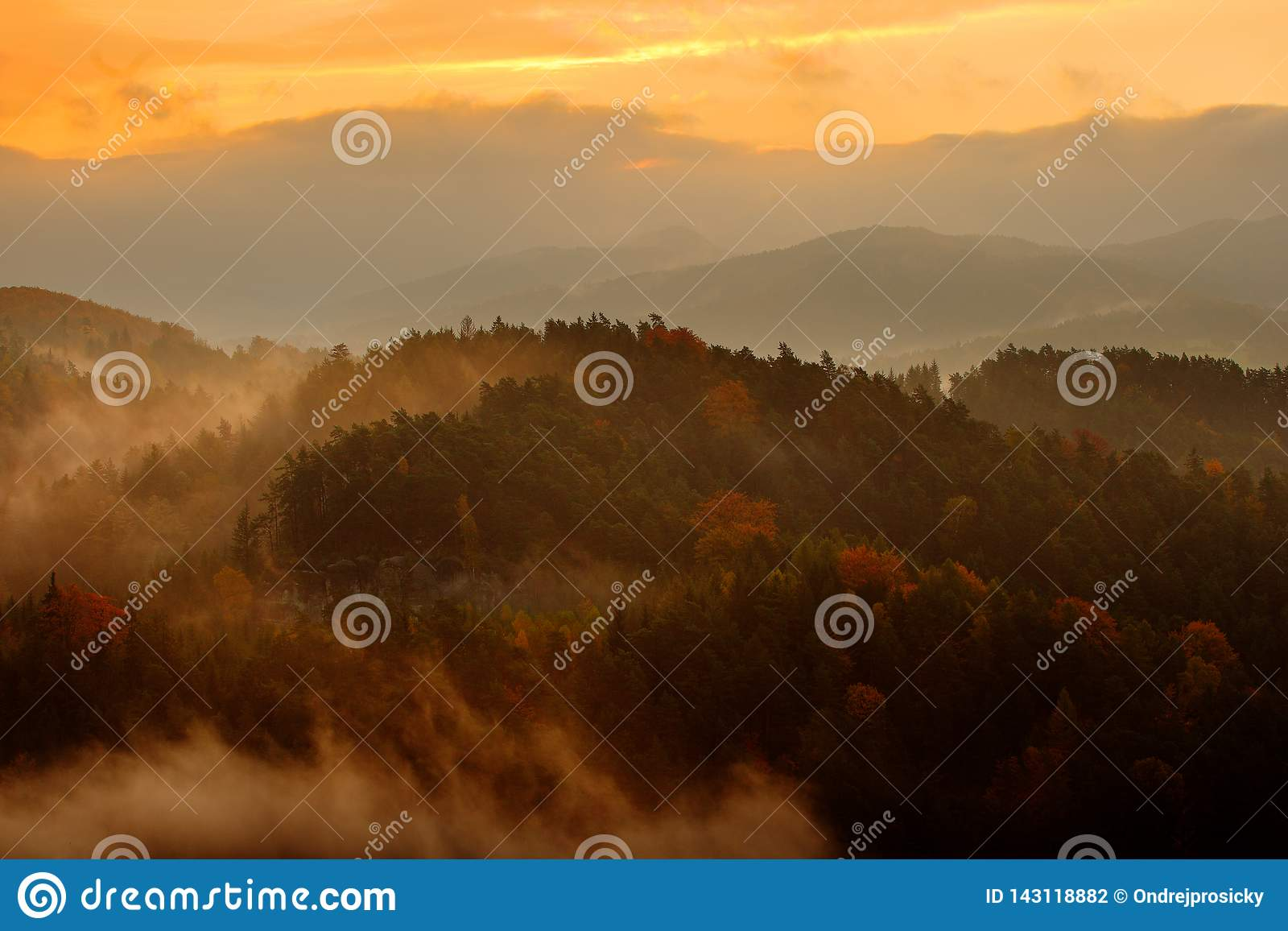 Beautiful foggy landscape. Cold misty foggy morning with twilight sunrise in a fall valley of Bohemian Switzerland park