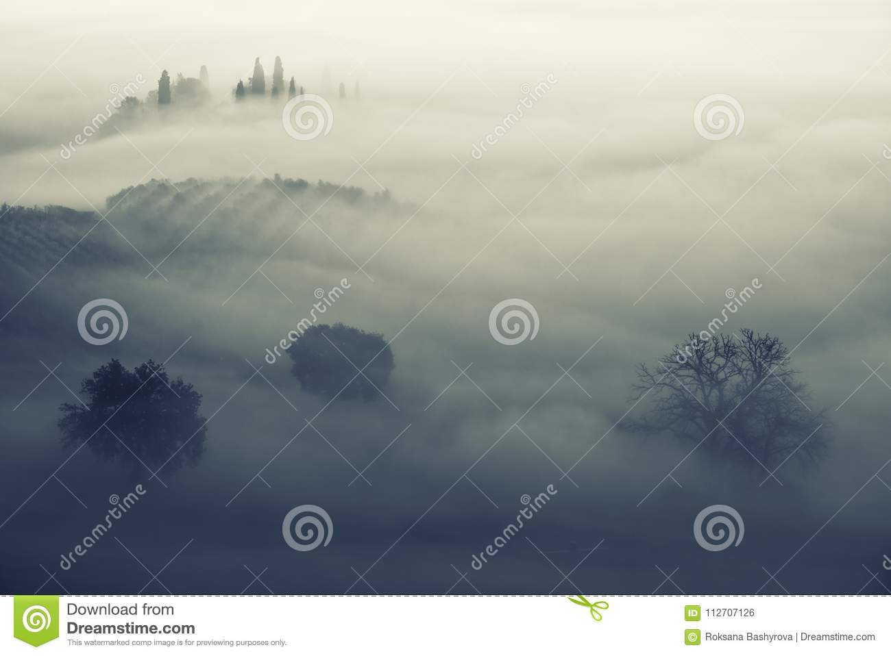 Drowned in the fog stock photo  Image of farm, cottage