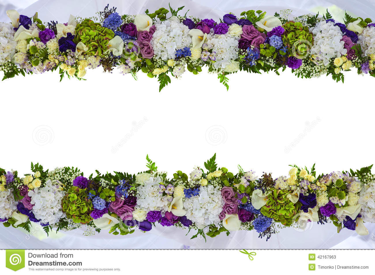 Beautiful frame for a card from natural flowers isolated stock download beautiful frame for a card from natural flowers isolated stock illustration illustration of izmirmasajfo