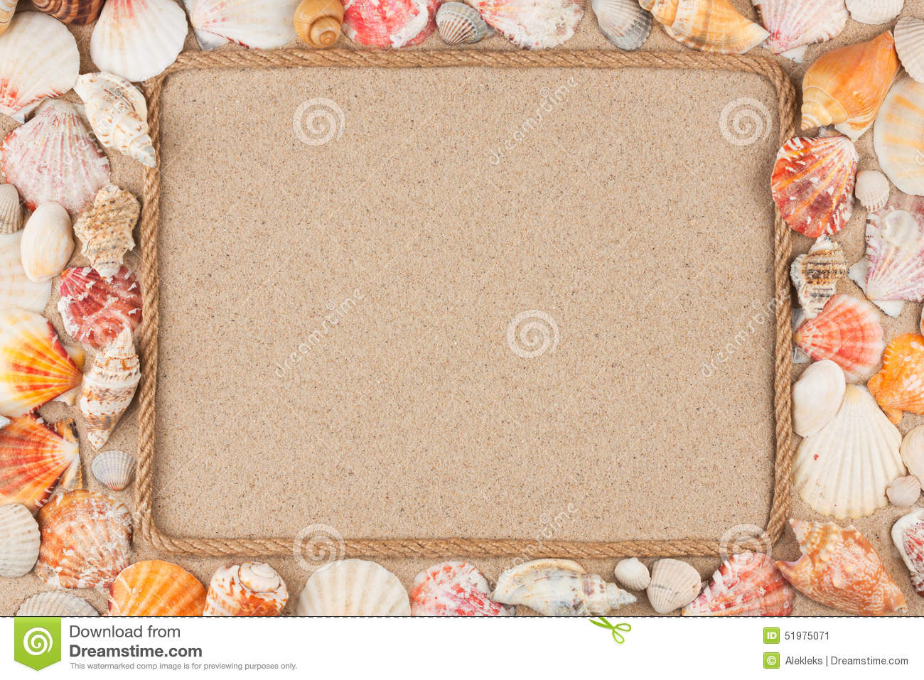 beautiful frame made of rope with seashells on the sand seashells clipart png seashell clipart freeware black and white