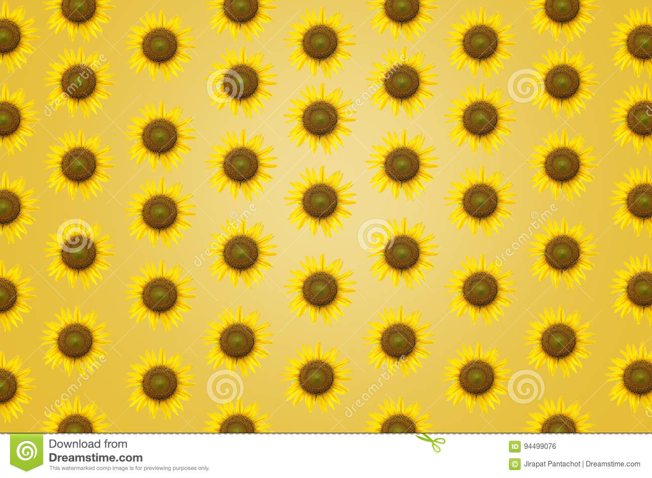 Beautiful frame sunflower background texture wallpaper