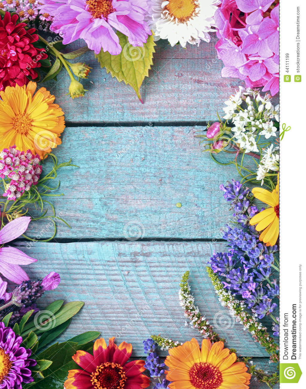 Beautiful fresh floral border stock image image of harvesting beautiful fresh floral border izmirmasajfo