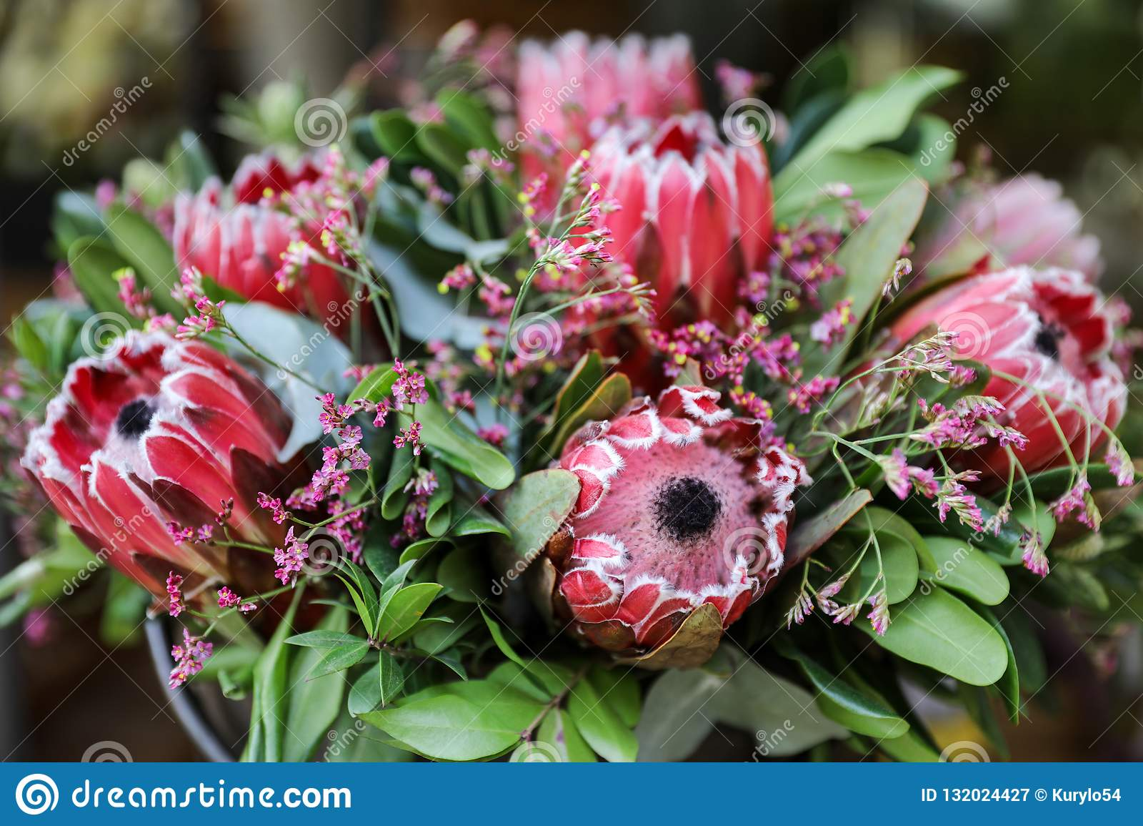 Beautiful fresh flower arrangement of Protea macrocephala flowers.