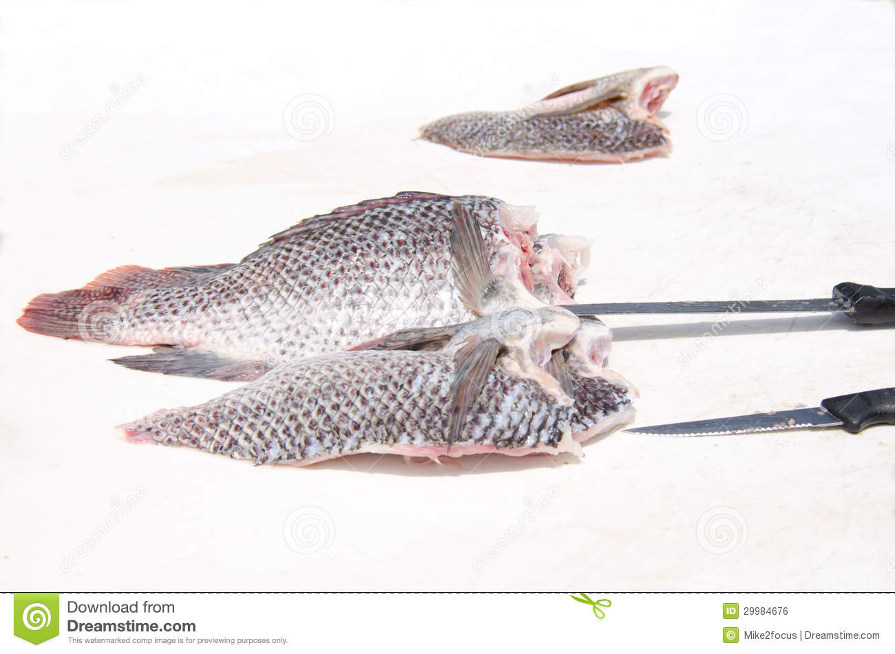 Fresh tilapia fish fillets on fish cleaning table royalty for Fish cleaning knife
