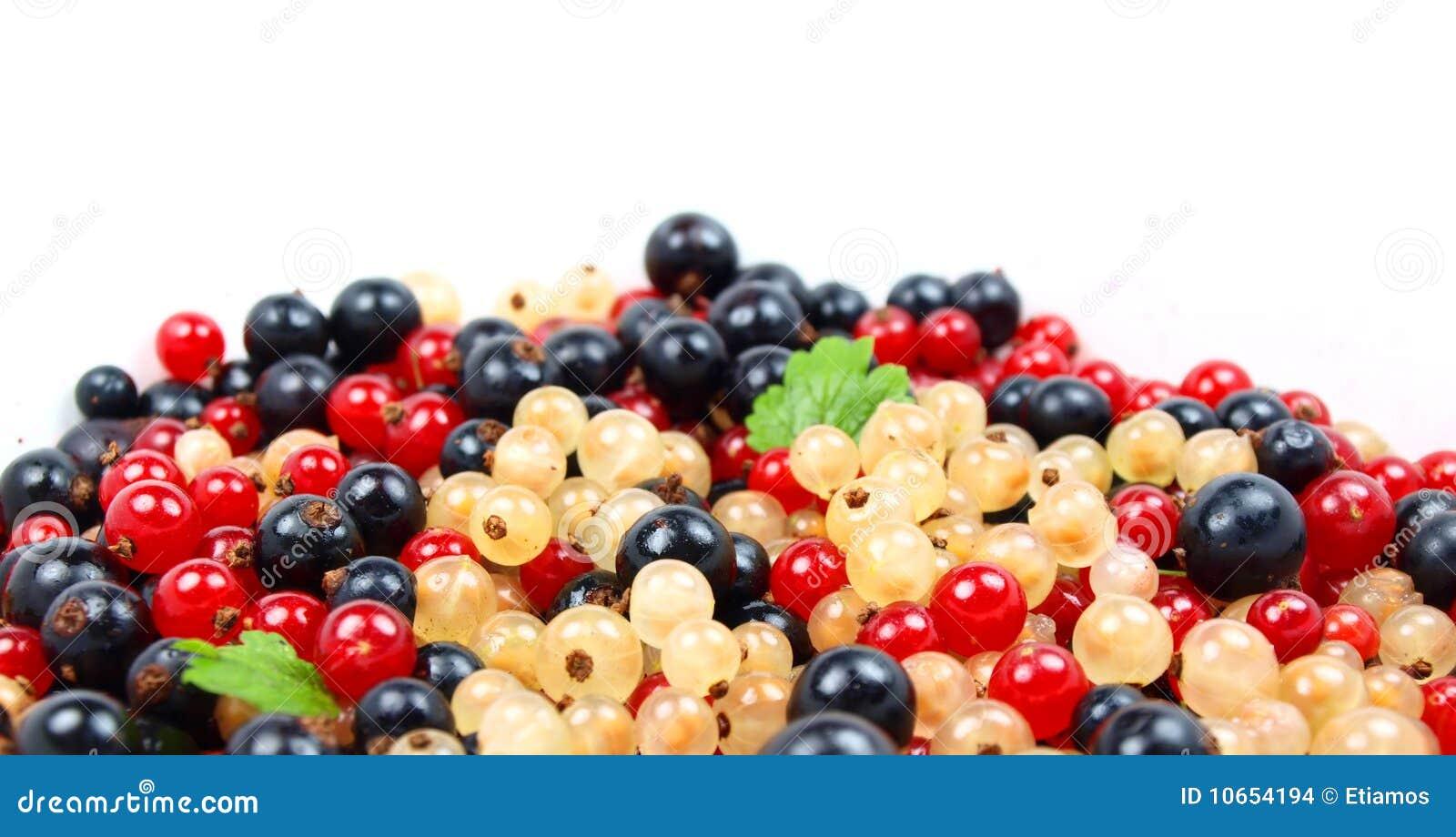 Beautiful fruit pictures - Beautiful Fruit