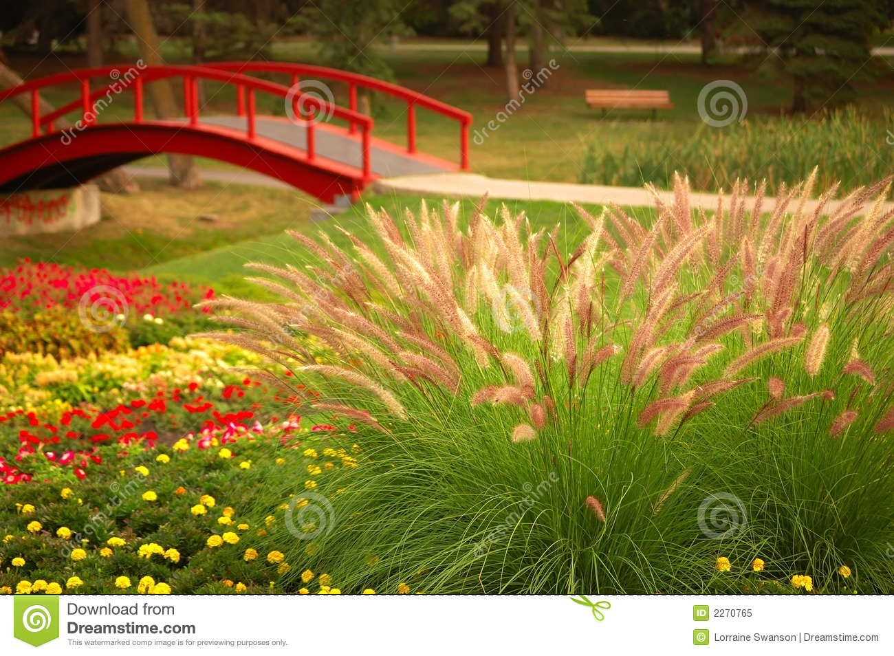 Beautiful Garden Royalty Free Stock Photo Image 2270765