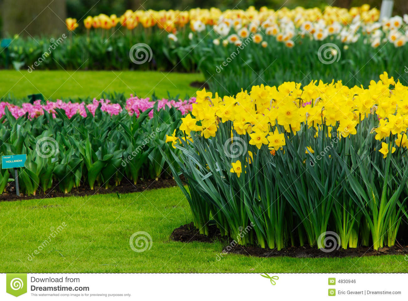 Beautiful Garden Royalty Free Stock Image Image 4830946