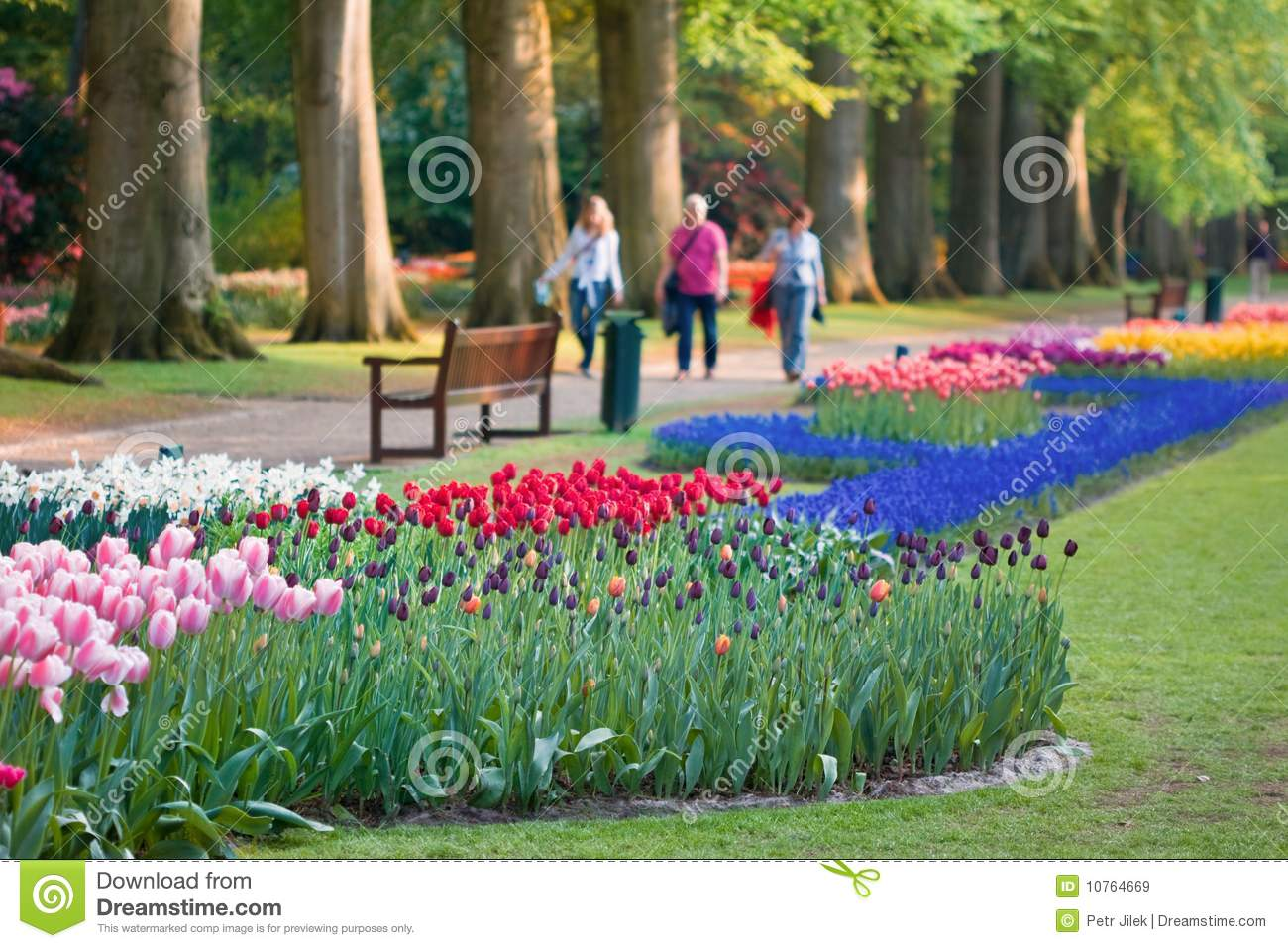 Beautiful Garden Of Colorful Flowers In Spring Royalty Free Stock