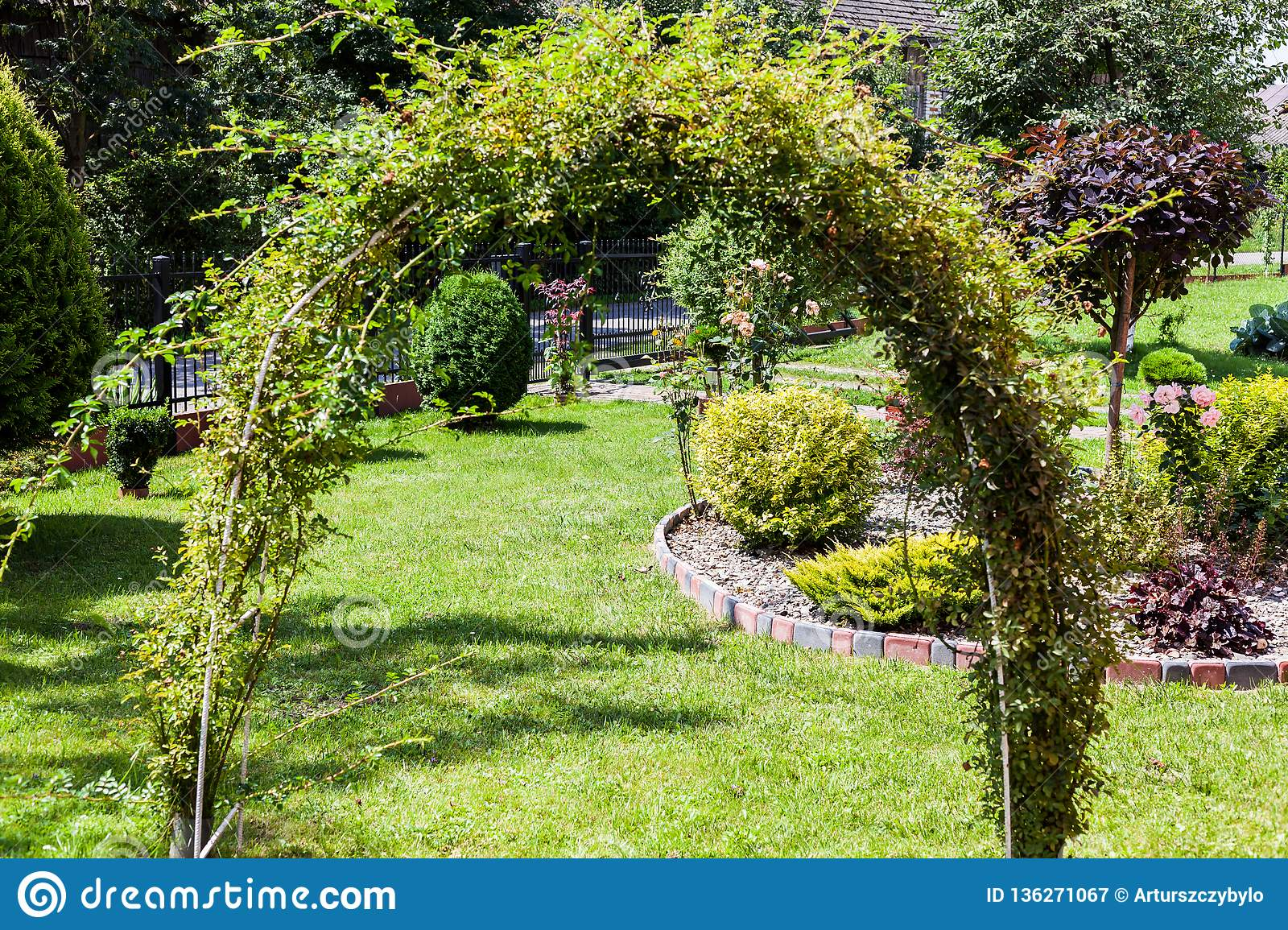Beautiful Garden With Green Grass And With Green Bushes Nature