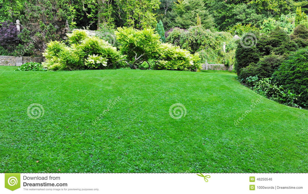 Beautiful garden stock photo image 46250546 for Pretty grass