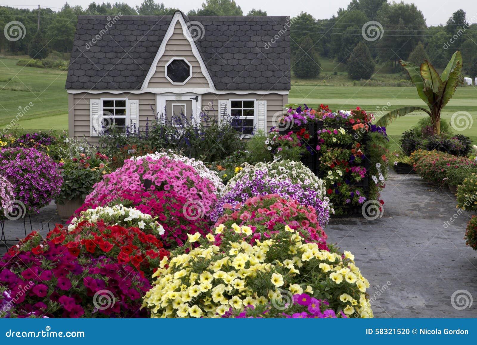 Beautiful garden with profusion of flowers stock photo image of download beautiful garden with profusion of flowers stock photo image of lawn shed izmirmasajfo