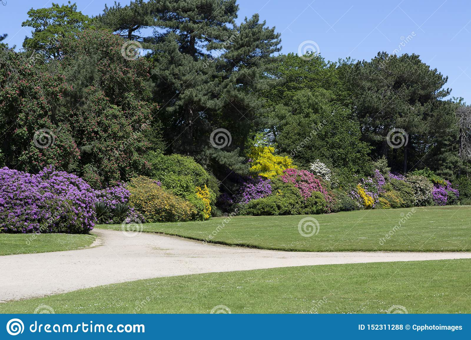 Beautiful Garden With Various Flowering Bushes Stock Photo Image