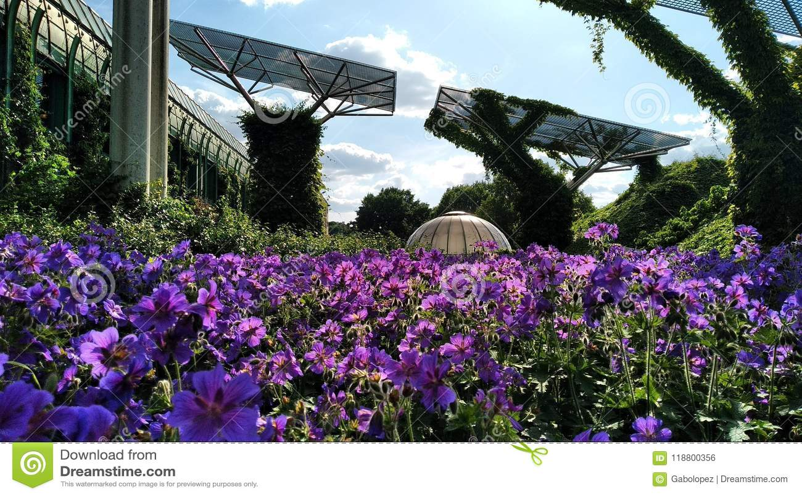 Warsaw gardens