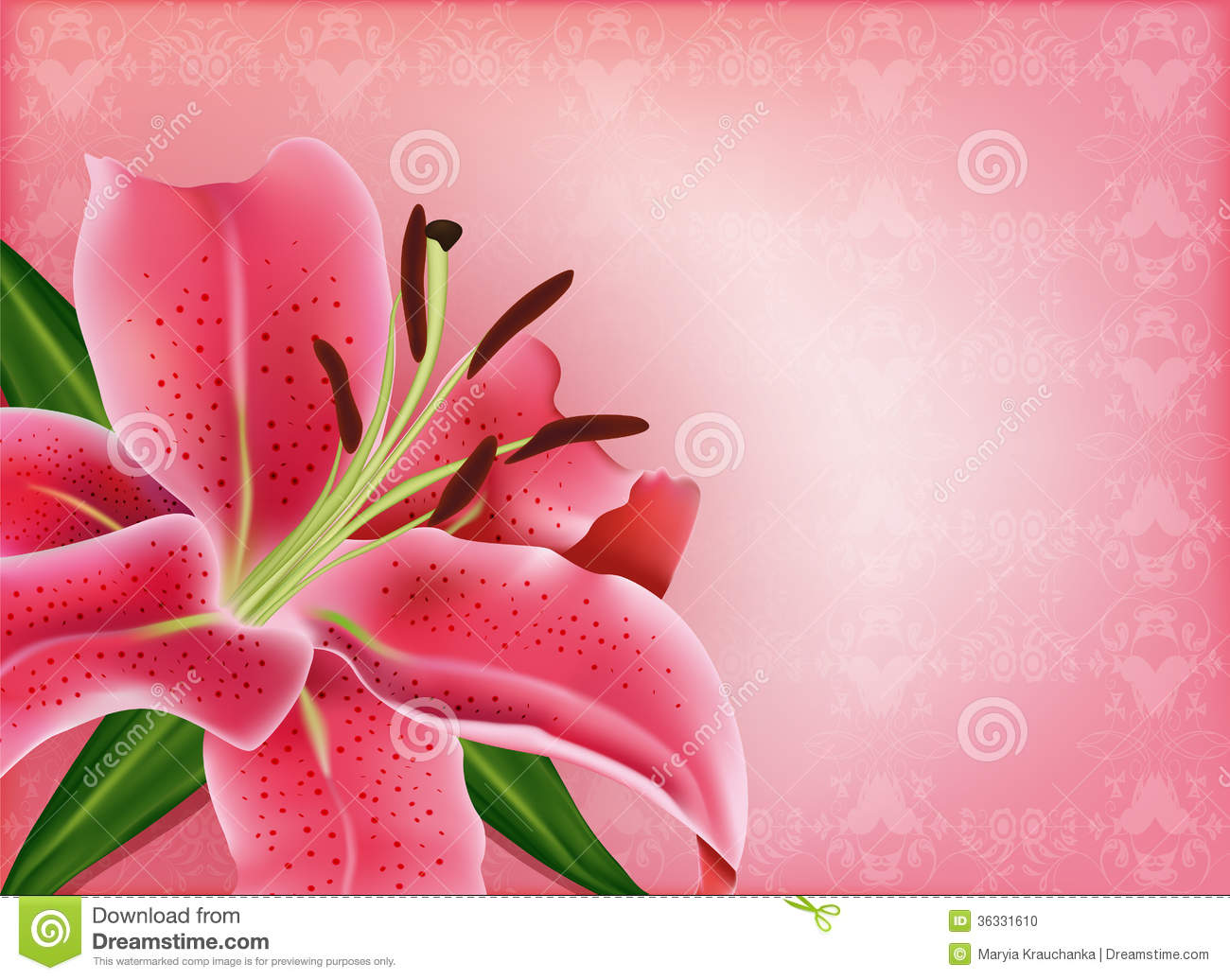 beautiful gift card with pink lily stock photo
