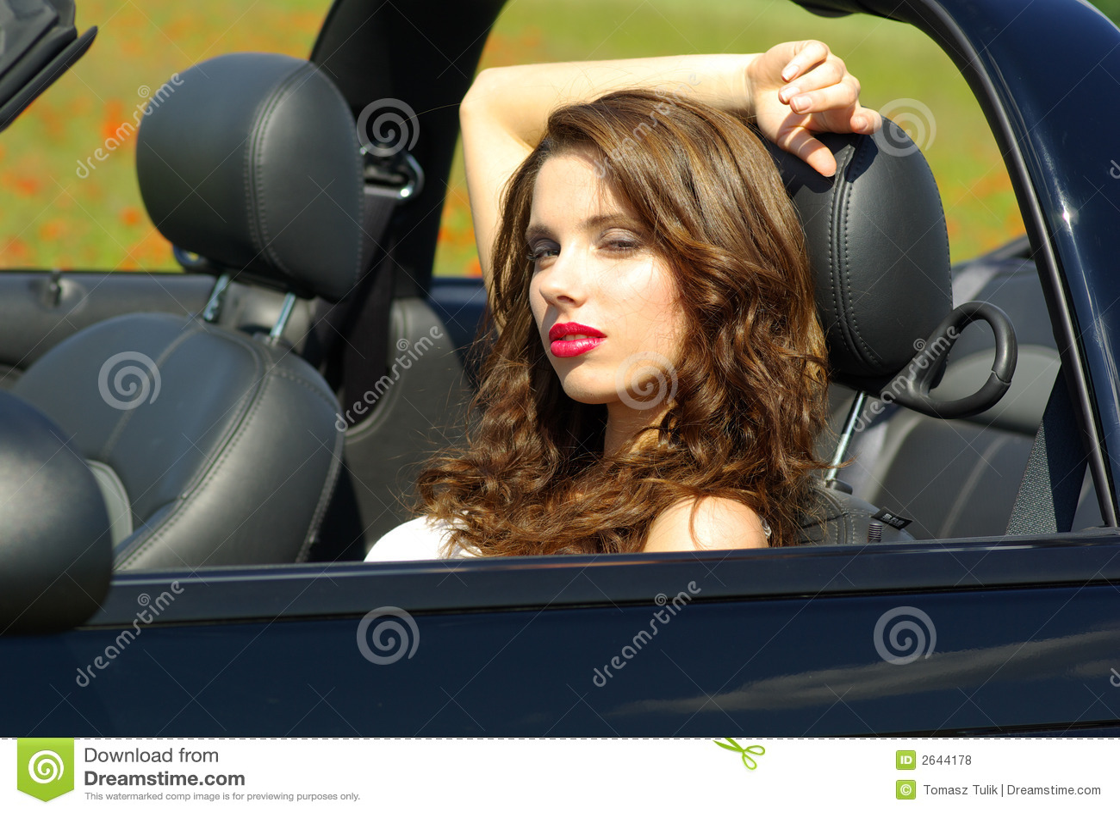 beautiful girl in car - photo #4