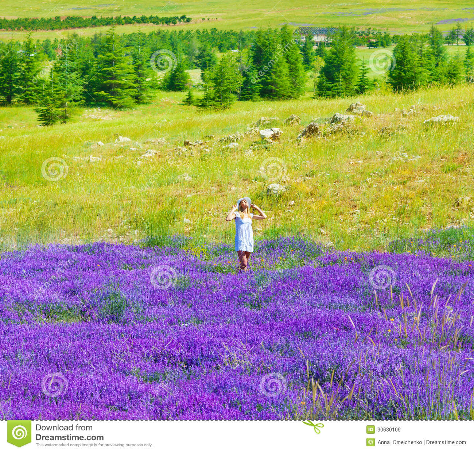 Happy Beautiful Woman Enjoying At Beach Stock Photo: Beautiful Girl Enjoying Lavender Field Royalty Free Stock