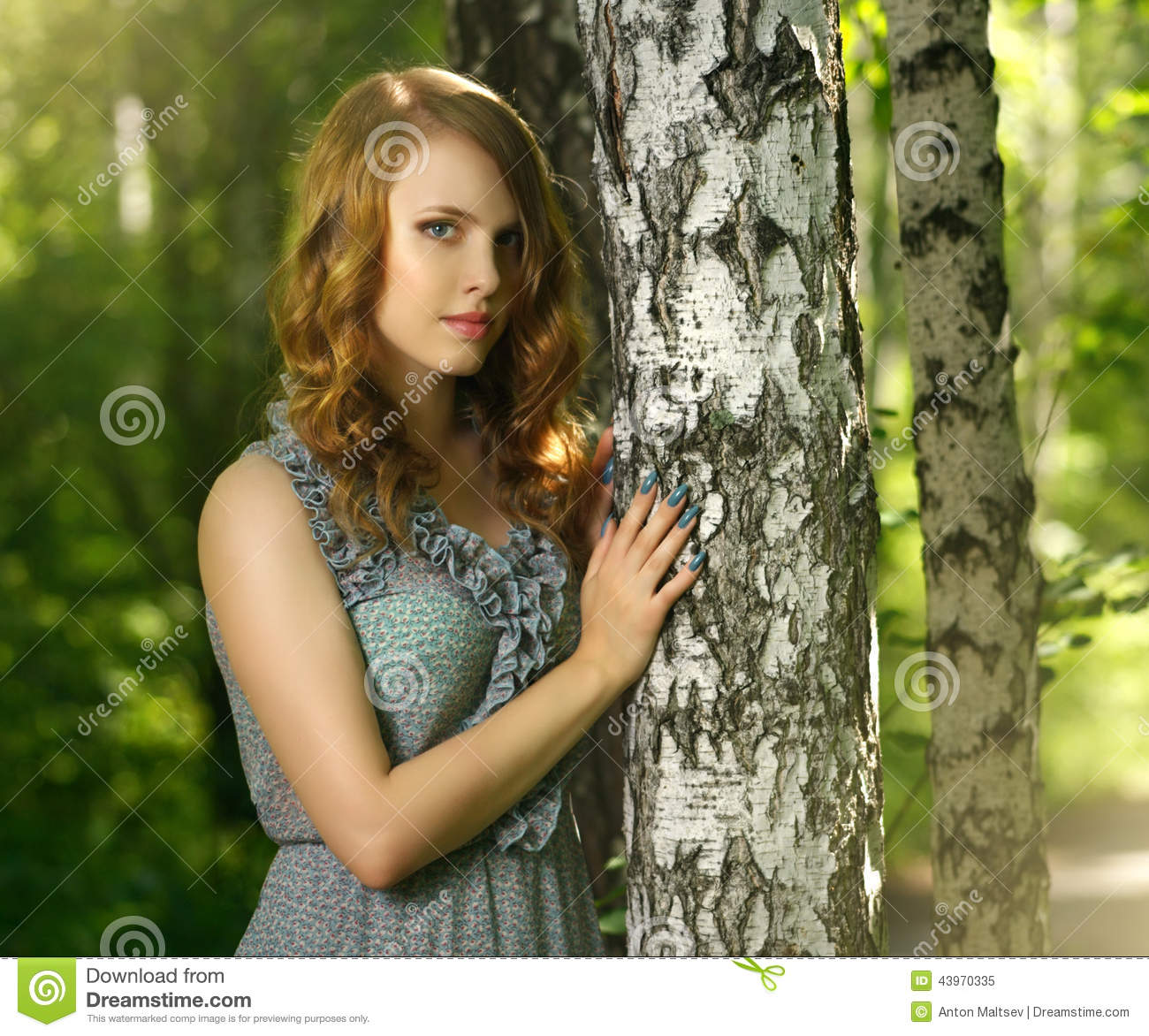 f0c33161d Beautiful Girl Fairy Forest Stock Images - Download 11