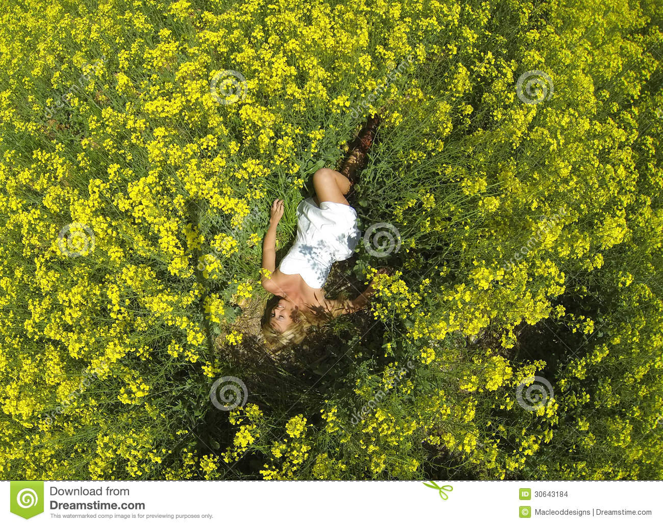 A Beautiful Girl Lying In A Field Of Yellow Flowers Stock ...