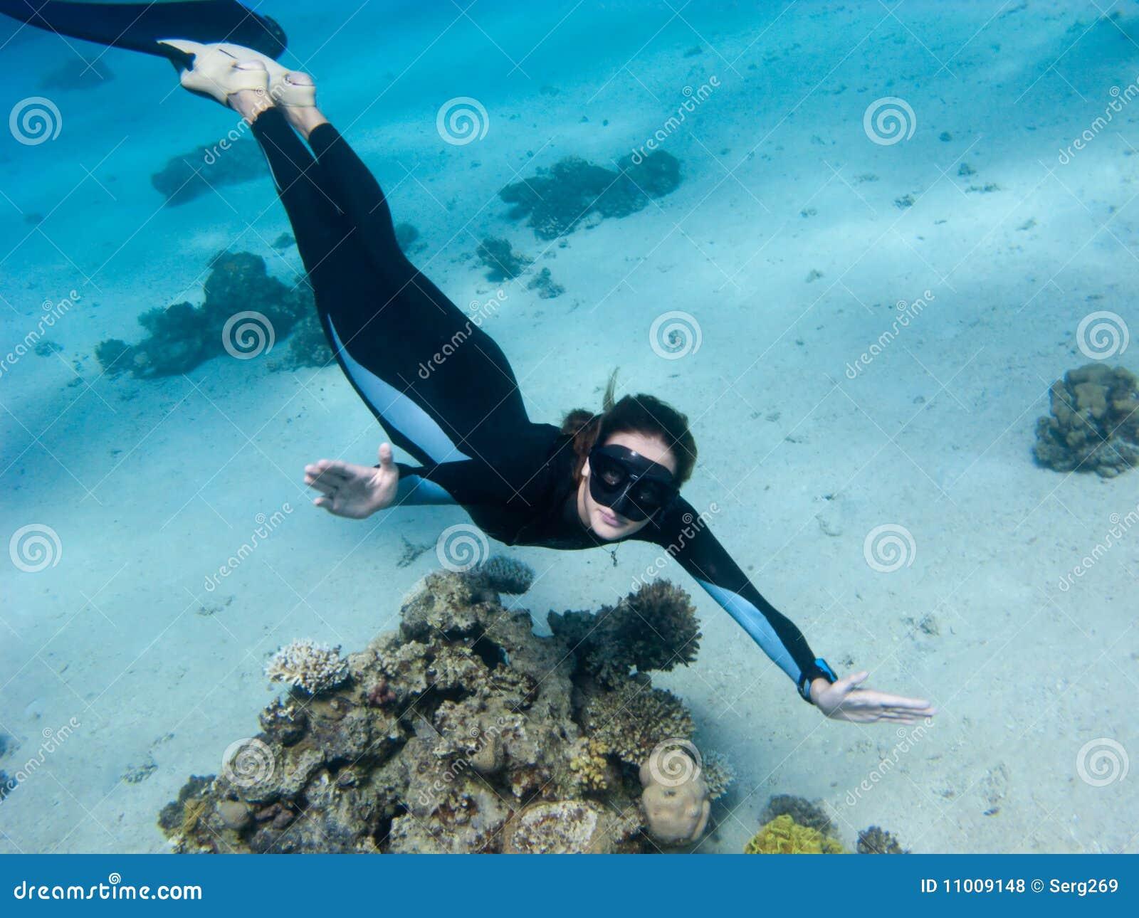 fimoe-aquaristik.com