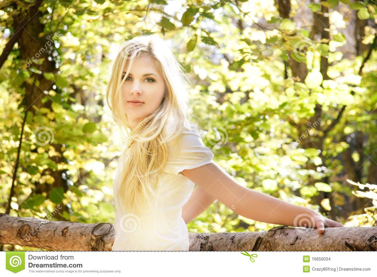 Beautiful Girl On Natural Background Stock Photo Image Of Model European 16650034