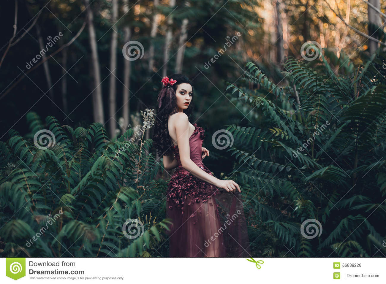 beautiful in a red dress stock photo image 66888226