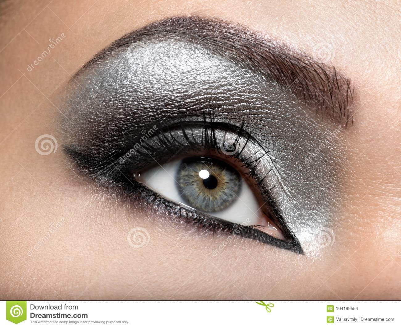 Beautiful girl with the silver makeup of eyes.