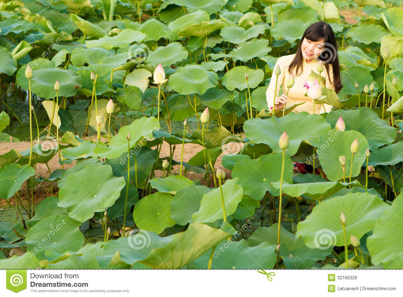 Beautiful Girl In Tradition Dress Plays In The Lotus Garden Stock