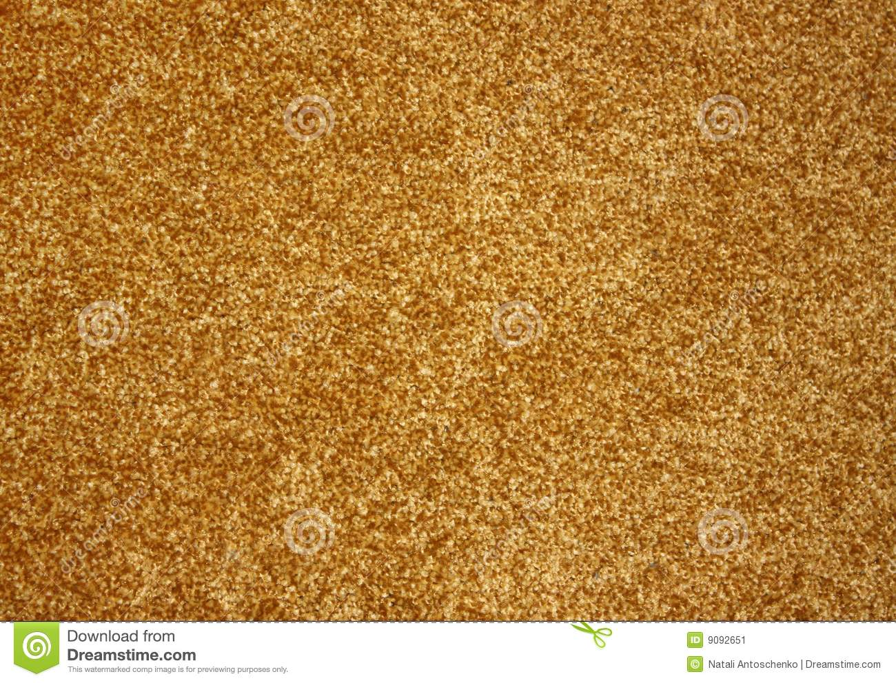 Beautiful Gold Carpet Stock Image Image 9092651