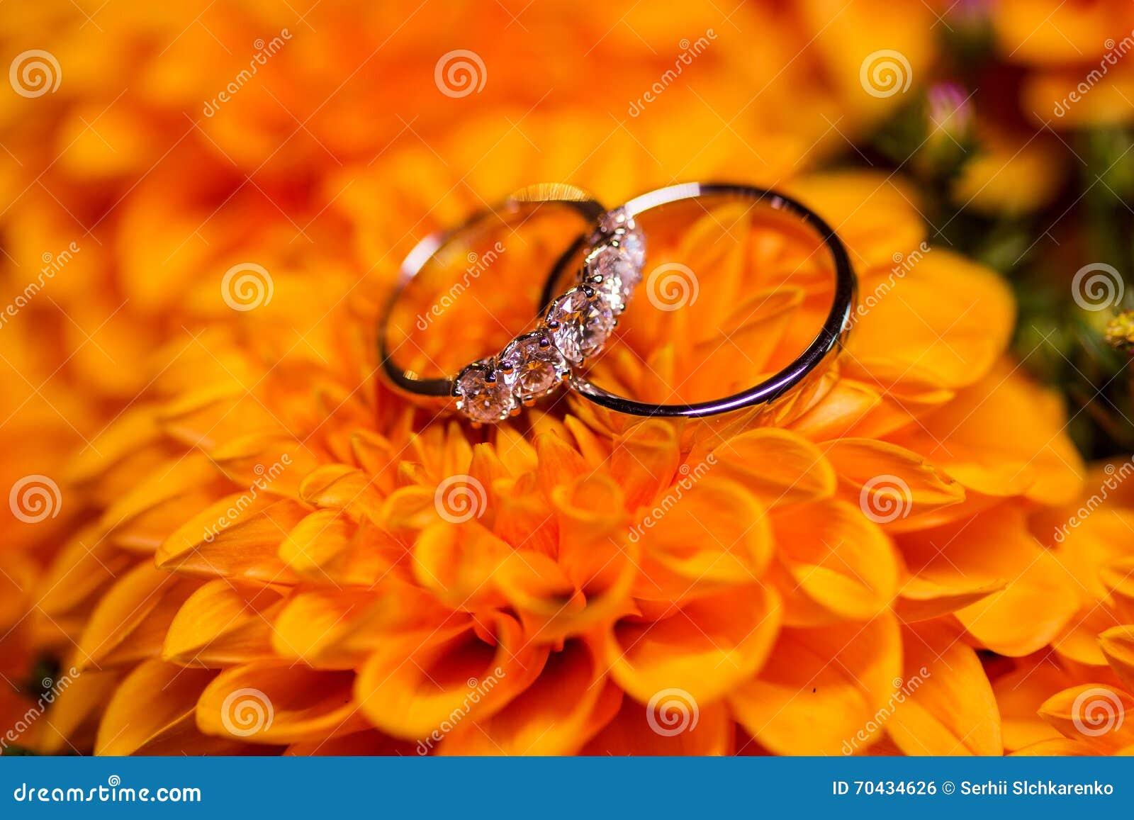 stock photo beautiful golden wedding rings diamonds orange flowers image orange wedding rings Beautiful golden wedding rings with diamonds on the orange flowers
