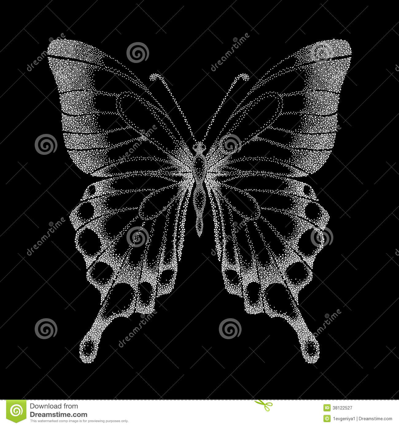 Contour Line Drawing Butterfly : Beautiful graphic black and white butterfly stock vector