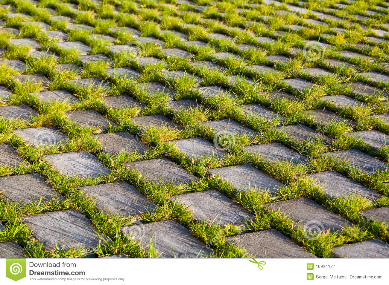 Beautiful grass and beton texture stock image image of for Pretty grass