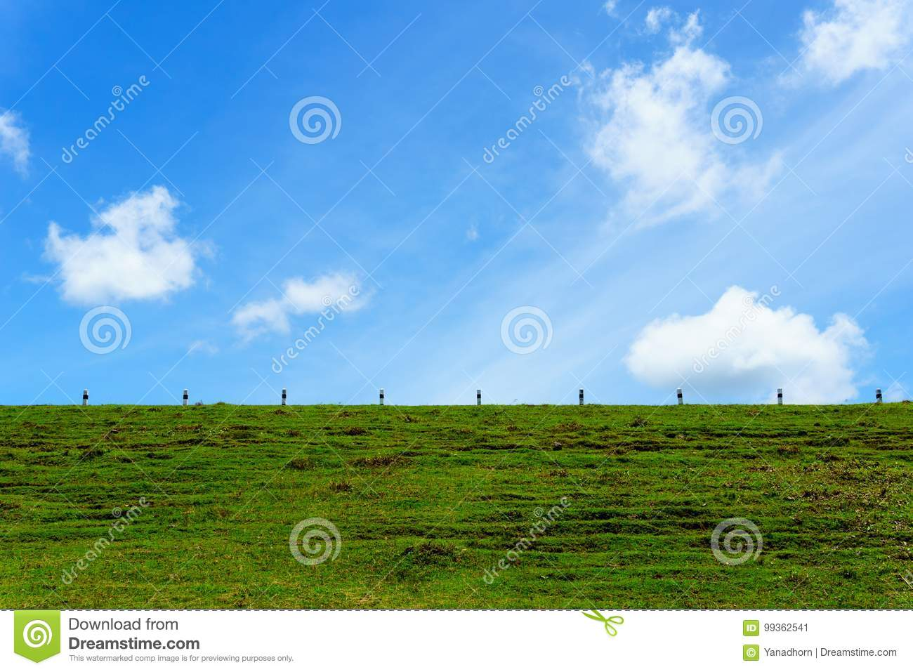 Beautiful Green Grass On The Earth Wall Of Dam With Blue Sky With