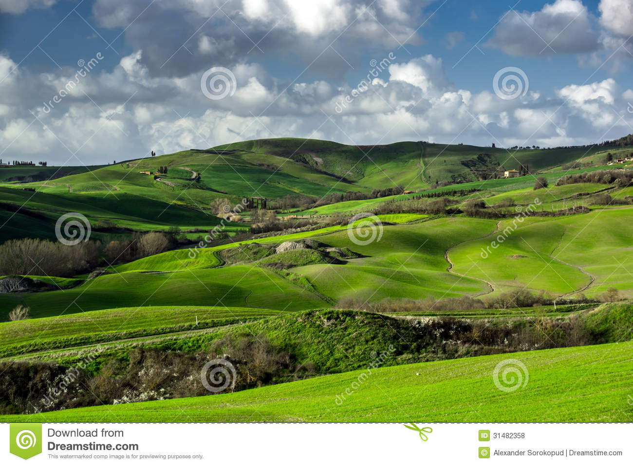 Beautiful green hills in tuscany stock photo image of for Green italy