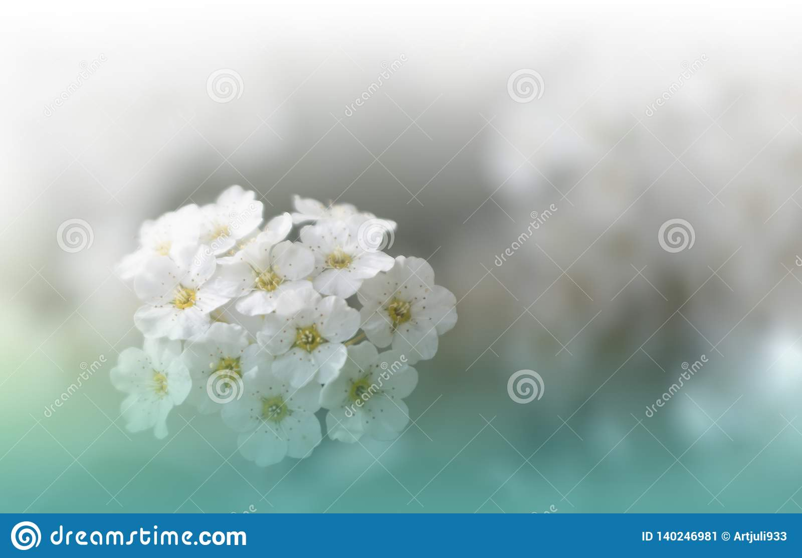 Beautiful Green Nature Background Copy Space Artistic
