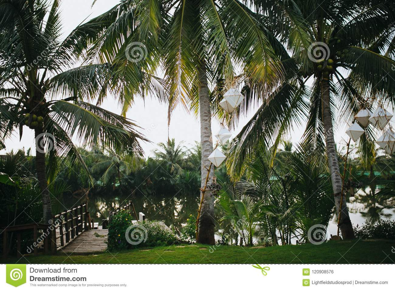 beautiful green palm trees with white lanterns hanging on branches and calm pond in park, Hoi