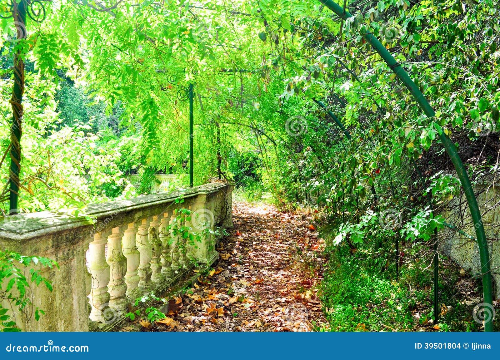 Beautiful green park