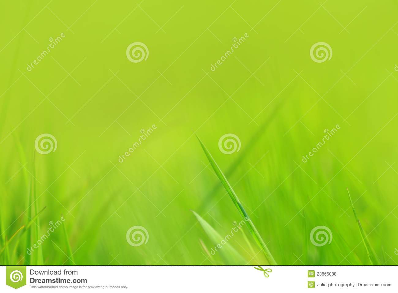 green spring background - photo #31